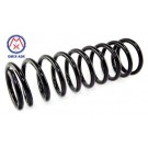 Front Replacement Coil Spring, 99-04 Jeep Grand Cherokee (WJ)